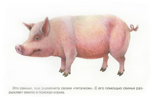 http://345-games.ru/wp-content/uploads/2012/02/1.jpg