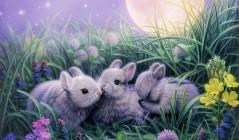 Сказка о непослушных зайчатах